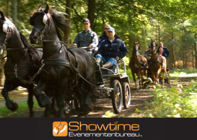Teambuilding programma cursus paarden mennen it's SHOWTIME Evenementenbureau